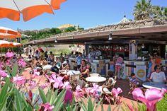 Un vasto giardino con una magnifica vegetazione mediterranea, dove le costruzioni collegate tra di loro da ponti di legno e patii fioriti, sono dominate dalle alte palme. www.aeroviaggi.it Centro Prenotazioni: tel. 0917434191- booking@aeroviaggi.it #HotelSicilia #vacanzesicilia #Brucoli #Sicilia #aeroviaggi #aeroviaggiclub