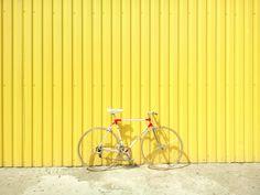 A cyclist's first si