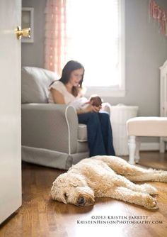 Lifestyle newborn portrait by Kristen Hinson Photography. Love this simple and clean nursery, grey with light pink and pretty pastels...even the dog loves it. :-)
