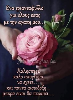 Good Night, Rose, Gifts, Pictures, Nighty Night, Pink, Presents, Favors, Roses