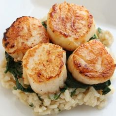 Seared Scallops over Wilted Spinach and Parmesan Risotto