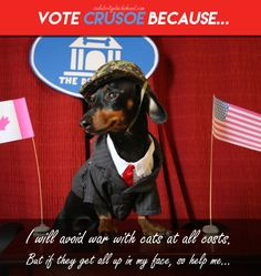 President Dog Says No War!