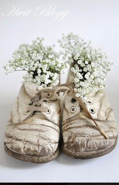 VIntage baby shoes with baby's breath Vibeke Design, Holding Flowers, Old Shoes, Deco Floral, Floral Lace, Baby Steps, Chinoiserie, Vignettes, Flower Arrangements