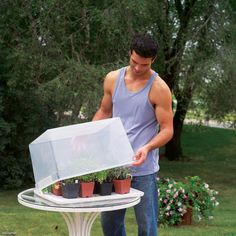 Give vegetable and flower seedlings an early growth spurt this spring. Place seedling trays in a mini greenhouse—an upside-down transparent storage container. Just put the lid in a warm, sunny location, load it with trays, then snap on the container. For greater air circulation, drill a few 3/8-in. holes in the sides of the box or let it rest loosely on the lid.