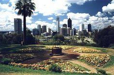 So drag those sne… Kings Park Perth, Places To Travel, Places To Go, Perth Western Australia, Bora Bora, Fiji, Beautiful Places, Tours, Explore