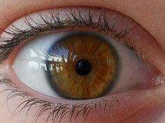 Rarest Eye Color In Humans Hazel Green Eyes, Hazel Eyes, Cute Eyes, Pretty Eyes, Honey Eyes Color, Brown Eyes Aesthetic, Beautiful Eyes Color, Rare Eye Colors, Iris Eye