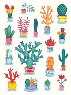 #cactus #plants made by Jessica H Lee