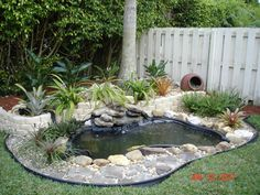 1000 images about my pond ideas on pinterest koi ponds for Goldfish pond ideas