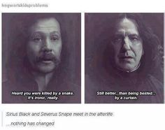 ImageFind images and videos about harry potter, severus snape and sirius black on We Heart It - the app to get lost in what you love. Harry Potter Welt, Harry Potter Jokes, Harry Potter Fandom, Severus Snape, Severus Rogue, Albus Dumbledore, Hogwarts, Slytherin, Geeks