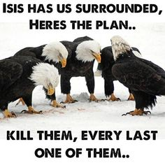 """And they answered and they were saying to him, """"To where, Our Lord?"""" He said to them, """"Wherever the bodies are, there the eagles shall be gathered."""" Luke 17:37"""