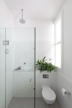 Envisioning This Configuration In Our Lone Bathroom: Shower Stall And  Toilet (?) In
