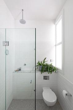 Shower shelf (hangin toilet)