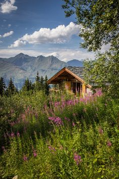 Love this little cabin with the mountains all around. Heaven!