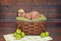 Newborn Picnic Basket Apples