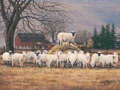 I guess I love sheep...