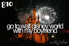 Go to Walt Disney World with my GIRLFRIEND / OTHER HALF / BABYGIRL / PARTNER (in crime?) / everything!