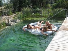 Natural Swimming Ponds, Treehouse, Glamping, Exterior, Outdoor Decor, Nature, Gardens, Patio, Backyard Landscaping
