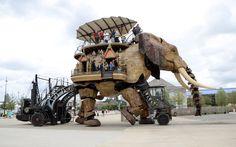 group les machinistes elephant nantes  Google Image Result for http://phareouest.fond-ecran-image.com/blog-photo/files/2011/07/Les-Machines-de-l-Ile-Le-Grand-Elephant-8.jpg
