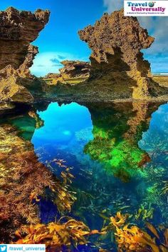 Beauty of Nature: Sorrento back beach, Australia  For more travel Updates/Offers and Interesting Stuffs be connected to  Travel Universally