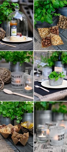 Images about eco friendly party ideas on pinterest