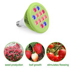 Special Offers - LED Grow light Bulb Kshioe Miracle Grow Lights for Hydroponics Greenhouse Organic Indoor Plants (E27 24Watts 3 Bands) For Sale - In stock & Free Shipping. You can save more money! Check It (November 17 2016 at 10:32AM) >> http://growlightusa.net/led-grow-light-bulb-kshioe-miracle-grow-lights-for-hydroponics-greenhouse-organic-indoor-plants-e27-24watts-3-bands-for-sale/