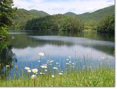 Unicoi State Park and Lodge   Georgia State Parks