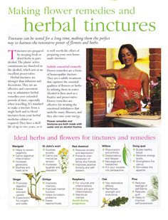 Making flower remedies and herbal tinctures