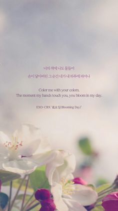 Cbx - blooming day