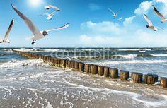 Ostseeküste v2 #124070863 - Plaża - Fototapeta