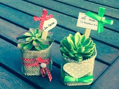 Bomboniere per eventi unici...create a mano: Idee country chic con le piantine grasse Weird Gifts, Plant Decor, Teacher Appreciation, Diy And Crafts, Favors, Gift Wrapping, Mary, Cactus Plants, Feltro
