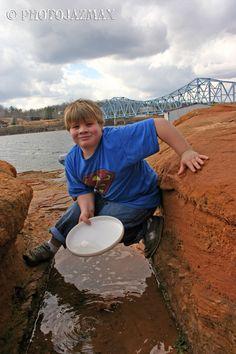Panning for Gold, Duncan Bridge Marina, Arley, Alabama