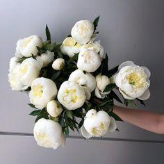 Bujori albi in rolul principal 🤍 Floral Design, Floral Wreath, Bouquet, Wreaths, Bride, Garden, Flowers, Decor, Wedding Bride