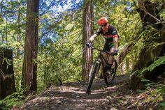 Wine Country Trails – Mountain Biking in Santa Rosa, California.
