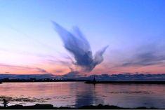 bird-clouds-02