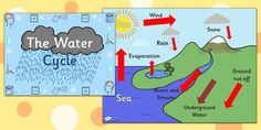 The 8 best water cycle diagram images on pinterest teaching water cycle diagram powerpoint water cycle the water cycle water cycle powerpoint ccuart Gallery
