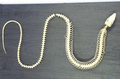 Godzilla Costume, Bones, Beaded Necklace, Jewelry, Beaded Collar, Jewlery, Pearl Necklace, Jewerly, Schmuck