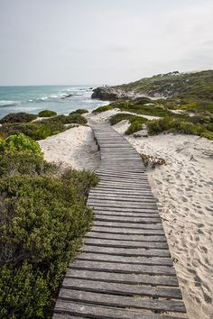 De Hoop Nature Reserve, Western Cape, South Africa - drizzleanddip