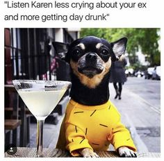 183 Best Karen Memes images in Ex Memes, Funny Dog Memes, Funny Animal Memes, Funny Cats, Funny Animals, Cute Animals, Dog Funnies, Dog Humor, Animal Funnies