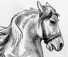 Image result for pencil drawing techniques for beginners