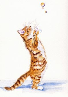 "Grey Pepper art. ORIGINAL WATERCOLOUR PAINTING: CATS, KITTENS: ""HUNTING BUBBLES"""