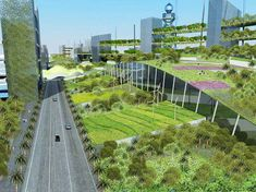 Extensive brown and green roof gardens - Green Roofs — Tiga Europe Limited