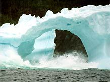 Iceberg Season in Newfoundland Newfoundland And Labrador, Pipe Dream, Titanic, Outer Space, Mother Nature, Family Travel, Photo Galleries, Whales, Amazing