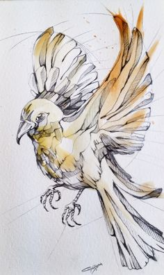 Bird on behance bird line drawing, bird drawings, animal drawings, pencil d Animal Sketches, Drawing Sketches, Illustrations, Illustration Art, Illustration Botanique, Bird Drawings, Animal Drawings, Thread Art, Wildlife Art