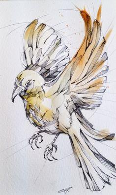 Bird on Behance