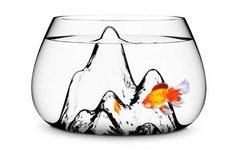 fish curved glass bowl