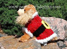 Ravelry: Santa Claus Dog Sweater pattern by Sara Sach  -- http://www.ravelry.com/patterns/library/santa-claus-dog-sweater