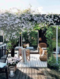 terrace garden 26 DIY Garden Privacy-I - gardencare Garden Deco, Diy Garden, Terrace Garden, Outdoor Spaces, Outdoor Living, Outdoor Decor, Scandinavian Garden, Garden Privacy, Ornamental Grasses