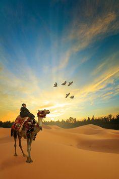 Sunrise in the desert - Maroc Désert Expérience tours http://www.marocdesertexperience