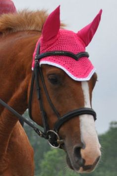 Heads Up Clothing - Highlight Your Horse with a Highly Visible Fly Veil