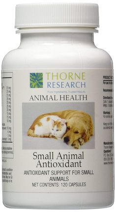 Thorne Research - Small Animal Antioxidant >>> For more information, visit image link. (This is an affiliate link and I receive a commission for the sales) Cat Health, Nutritional Supplements, Pet Supplies, Vegetarian, Pure Products, Pets, Small Animals, Awesome Stuff, Check